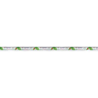 1104 - canudo para Milk Shake 21cm x 8mm Strawplast 100un - biodegradável