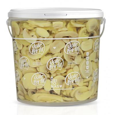 1839 - cogumelo/champignon fatiado Vale Fértil 2kg