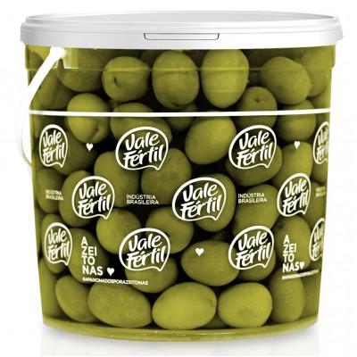 2749 - azeitona verde gordal Vale Fértil 2kg 70/80