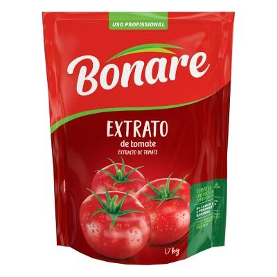 3746 - extrato tomate Bonare bag 2kg brix 10%